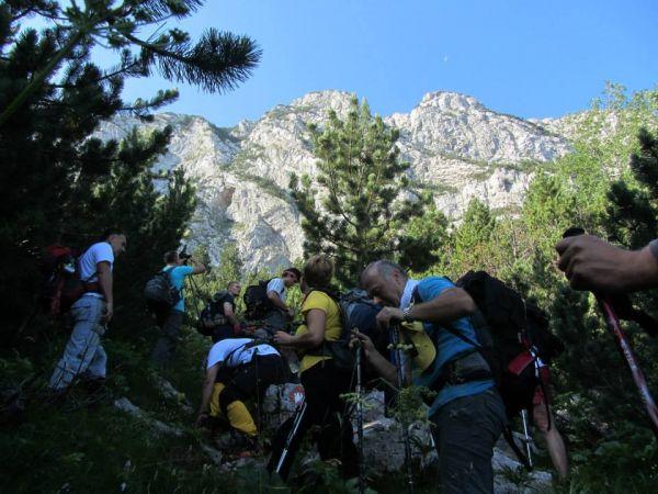 Održan 15. memorijalni susret planinara u Masnoj Luci