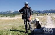 PASTIRI NA BLIDINJU: Čuvam ovce i zarađujem novce, posao pastira na Blidinju
