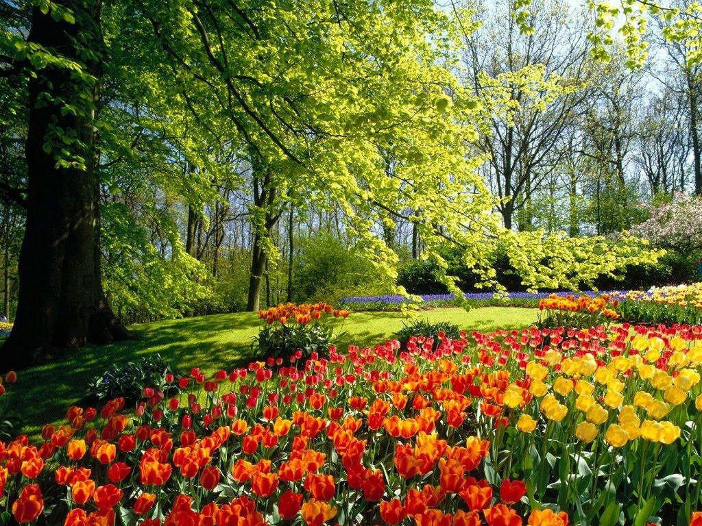 GODIŠNJE DOBA: Danas prvi dan proljeća