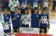 """Osam medalja za """"poskoke"""" na turniru """"Fojnica Open 2015."""""""