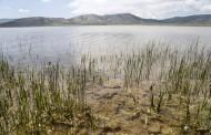 VRATILE SE PATKE: Blidinjsko jezero zablistalo u punom sjaju