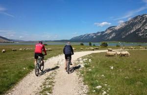 Renata pravi ljekovite preparate, Ante promovira brdski biciklizam