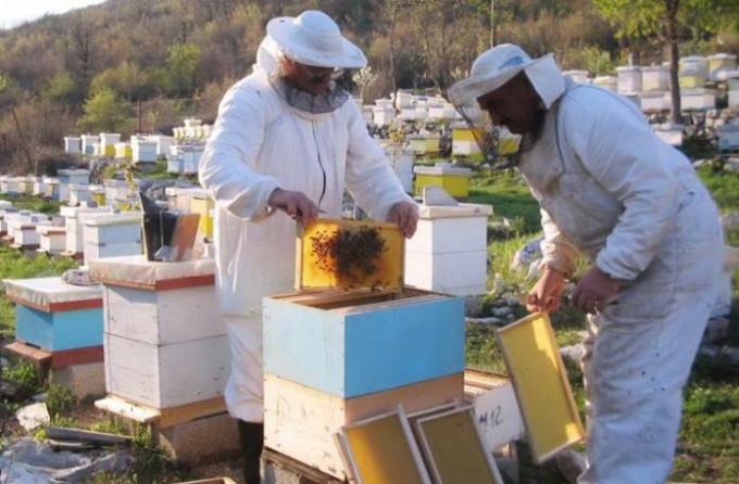 U Trebinju se okupili pčelari iz Hercegovine i Crne Gore
