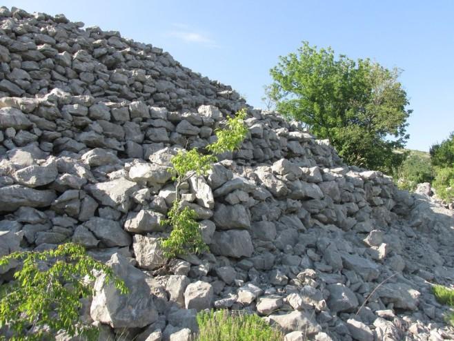 Glamuzina: Piramide nisu u Visokom, nego u Hercegovini