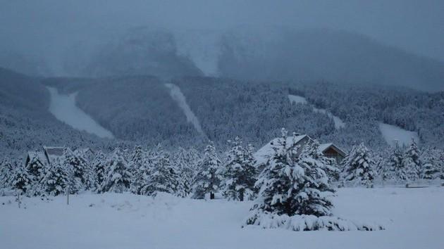 Snijeg – periodična pojava u našem parku