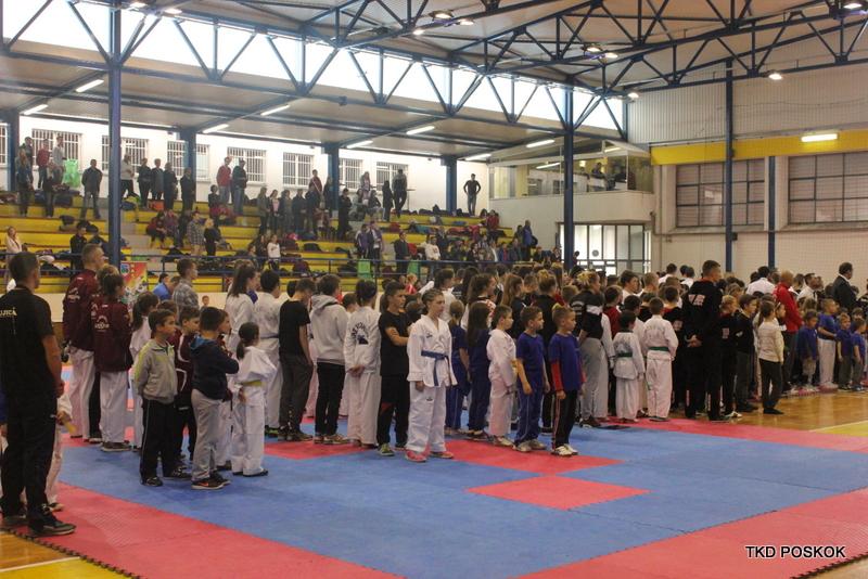"""FOTO: Pregršt medalja za """"Poskoke"""" na taekwondo prvenstvu FBiH"""