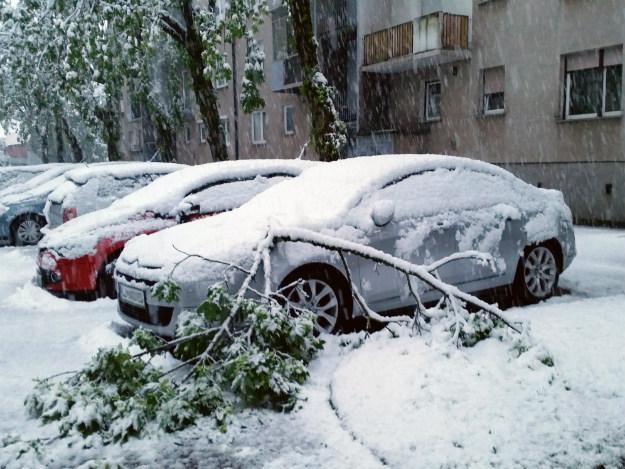 Snijeg paralizirao Sloveniju: Deseci tisuća bez struje