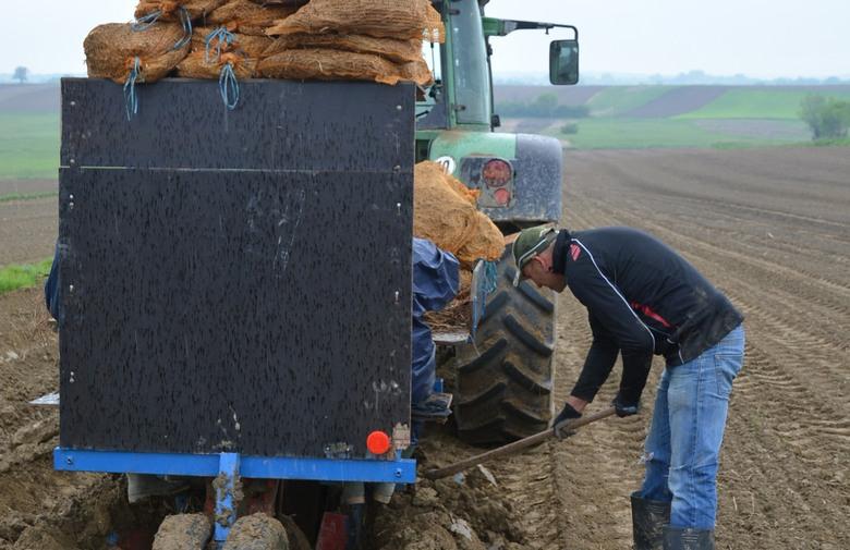 Počela isplata poticaja za poljoprivredu