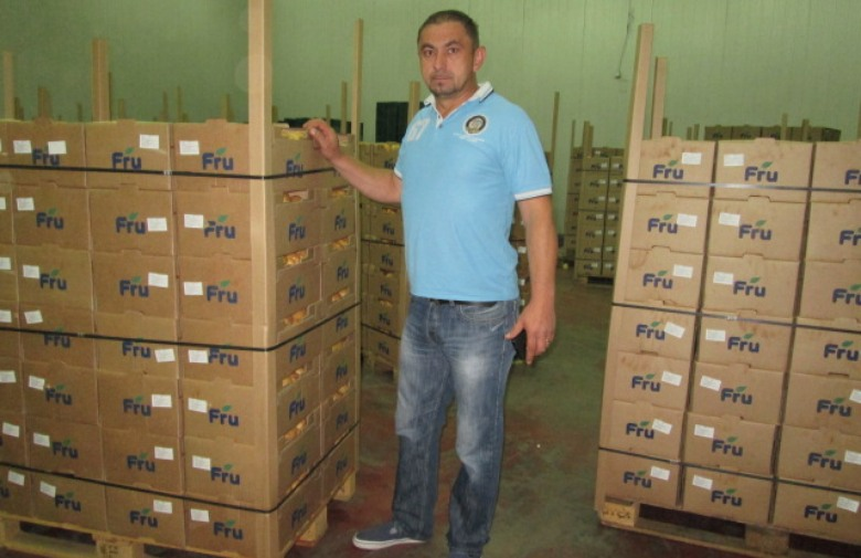 VELIKI ISKORAK: Hercegovački mladi krumpir na policama trgovina u EU