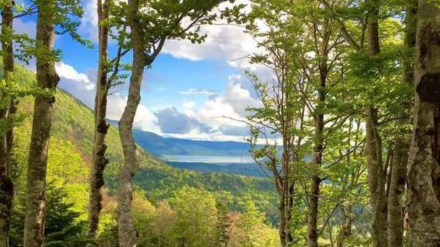 Na Blidinju ovo ljeto uživajte u Panoramskoj vožnji četverosjedom