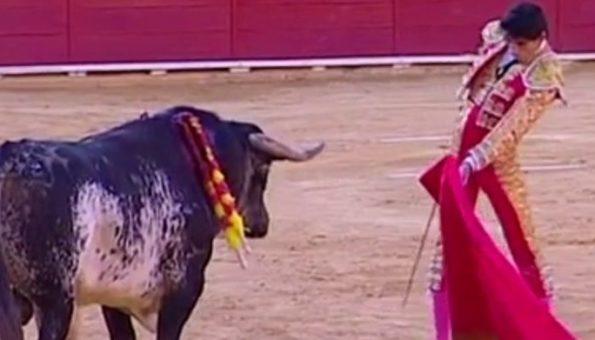 ŠPANJOLSKI NAROD JE U ŠOKU: Slavni toreador Baario umro je ženi pred očima nakon što mu je bik rog zabio u prsni koš