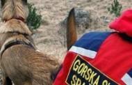 Uspješna akcija GSS u Gracu