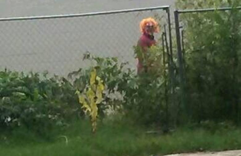 Internetom kruži fotomontaža klaunova 'viđenih' u Posušju