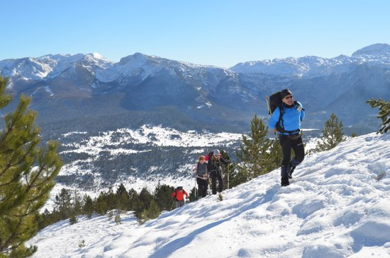 Zimski uspon planinara HPD-a Pločno na Vran