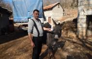 Po magareće mlijeko u Grude dolaze iz Njemačke, Češke, a Ante ga šalje i brzom poštom