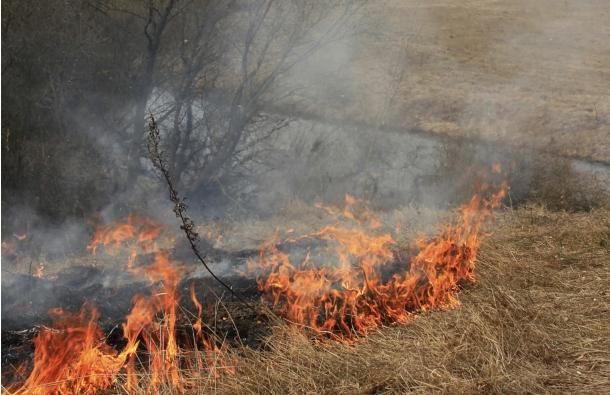 OPREZ: Ne palite vatru na nedopuštenim mjestima