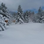 19042017-blidinje-snijeg12