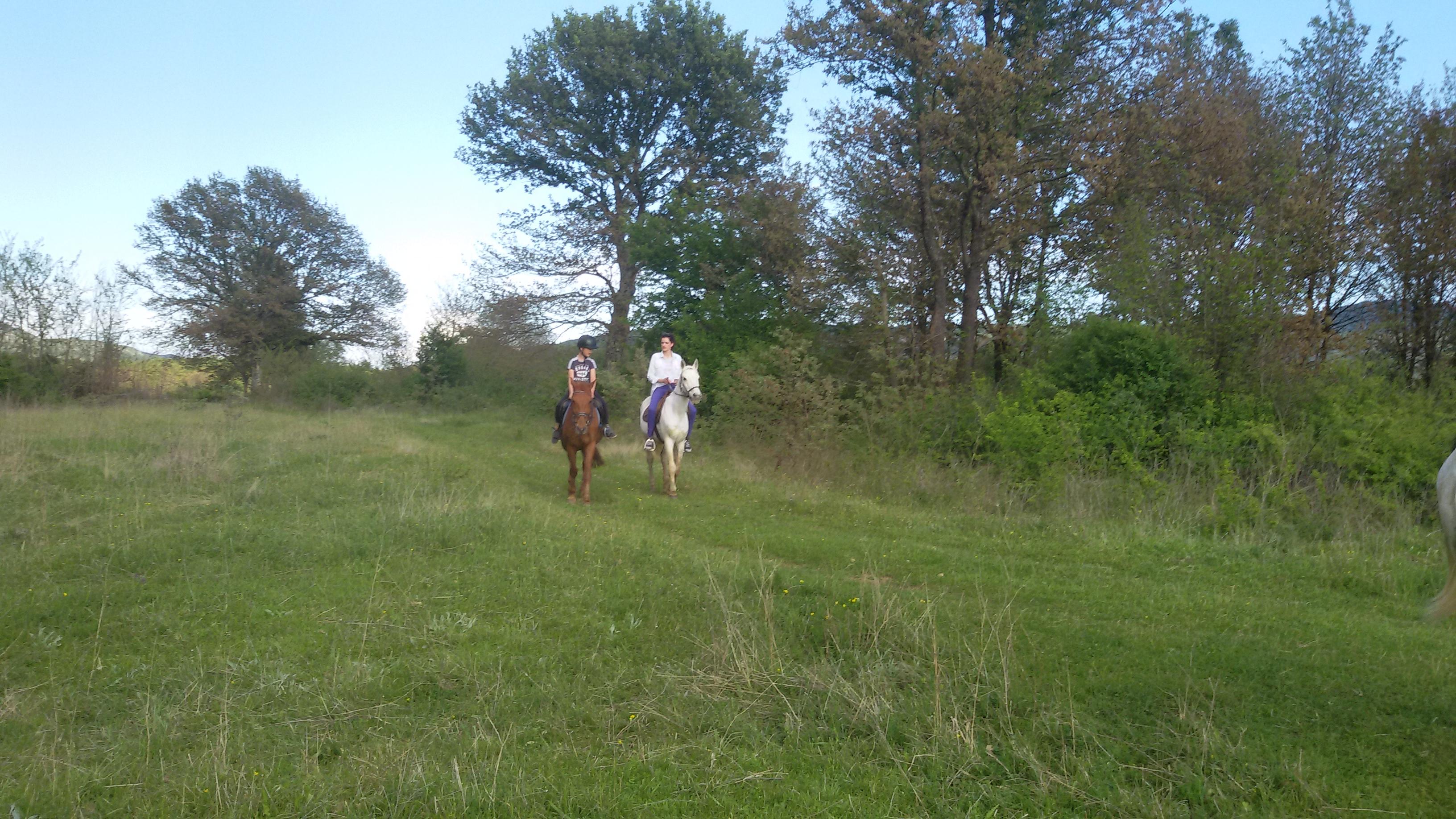 Vikend provedite na Blidinju gdje vas očekuje i mogućnost jahanja konja