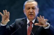 KASAPOVIĆ: Erdogan obnavlja hegemoniju Turske u BiH, glavni mu je oslonac dinastija Izetbegović