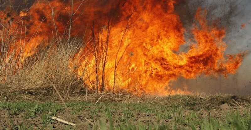 Apel stanovništvu: ne palite vatru na otvorenom, i najmanja nepažnja može dovesti do velikih požara