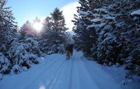 Danas je najkraći dan u godini – prvi dan zime