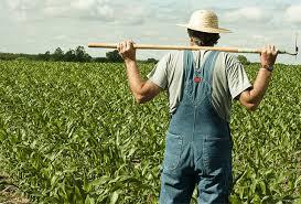 Ažurirajte na vrijeme plan poljoprivredne proizvodnje