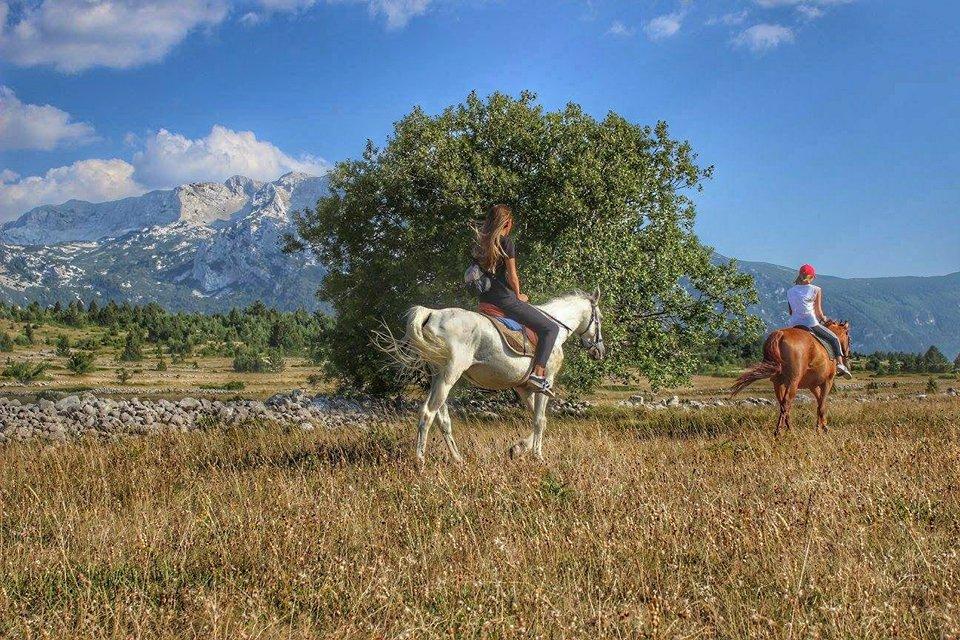 HORSE RANCH BLIDINJE OVAJ VIKEND ZAPOČINJE AVANTURU REKREATIVNOG TERENSKOG JAHANJA NA BLIDINJU