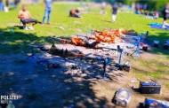 Žitelji Berlina šokirani: Državljani BiH okrenuli 12 janjaca u parku