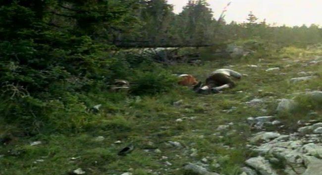 Nekažnjeni zločini tzv Armije BiH: Doljani, Stipića livade 28. srpnja 1993.