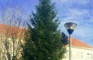 NAJAVA: Zajedničko ukrašavanje bora na Trgu hrvatskih branitelja