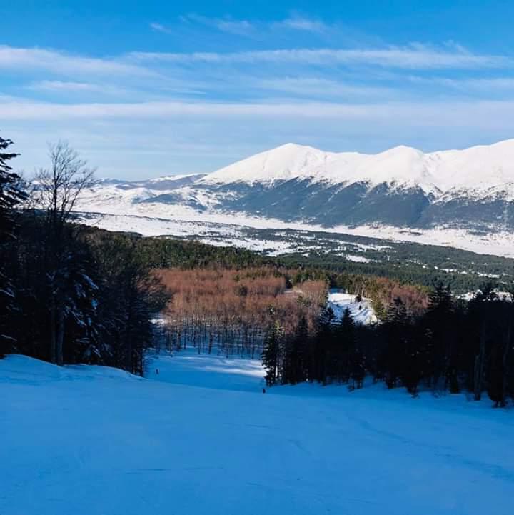BLIDINJE: Park prirode Blidinje sa brojnim specifičnostima jedinstveni rezervat BiH