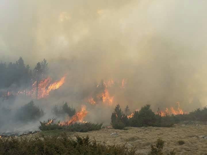 Sedam požara u ŽZH, najviše u Posušju