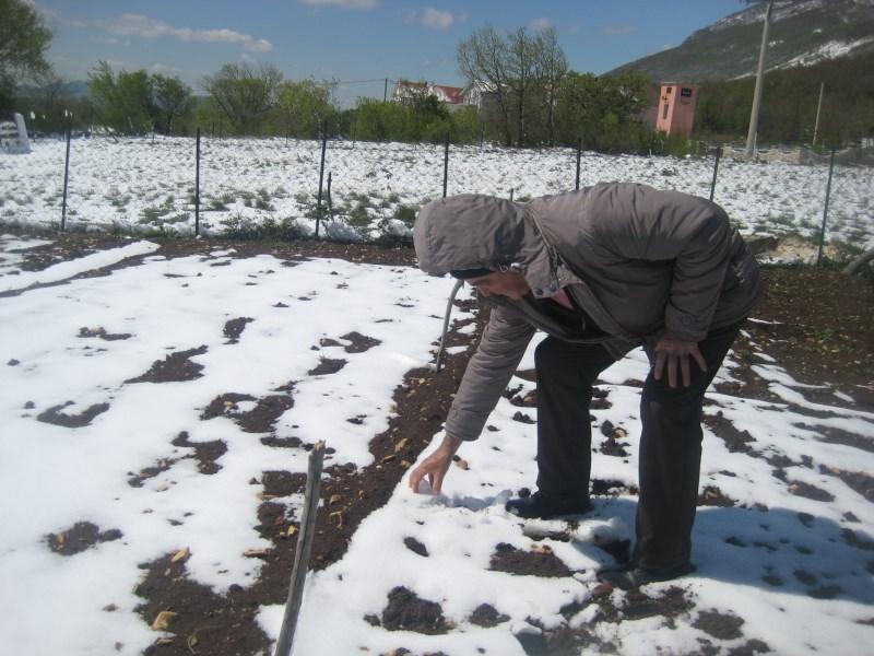 ZIMA: Snijeg pred početak proljeća