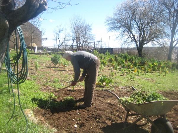 U svom vrtu za dobro zdravlje