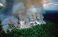 Kolumbija će predložiti regionalni pakt za očuvanje Amazonije