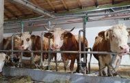 AGENCIJA ZA STATISTIKU: Počelo treće godišnje istraživanje farmi u BiH