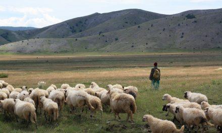 ZANIMLJIVOSTI: Cursko vrilo i staro silo u Rakitnu