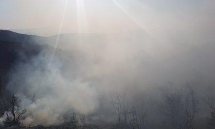 GORJELO U POSUŠJU: Požar prijetio crkvi i staji u Gracu, ugrožene bile vikendice u Vučipolju!