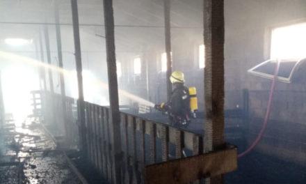 MANDINO SELO: U požaru kod Tomislavgrada stradalo sedamdesetak kozlića