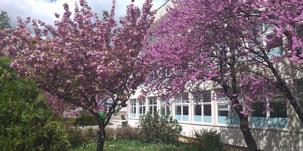 ŽZH: Odgođen upis učenika u prvi razred osnovne škole