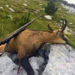 Apel: Spriječimo krivolov na Blidinju koji svakodnevno ugrožava životinje, ali i ljude