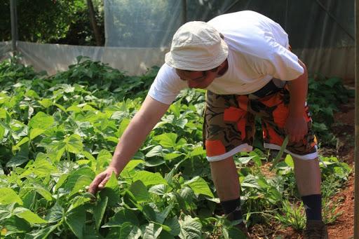 Javni poziv za podnošenje prijava za dodjelu financijske pomoći subjektima iz poljoprivredno-prehrambenog sektora
