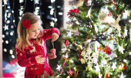 Evo kada kupiti božićno drvce i kako ga sačuvati