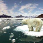Summit o prilagodbi klimi, veliki povratak Sjedinjenih Država