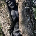 Kip Isusa pronađen kako viri iz stabla