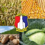 Obavijest o ažuriranju podataka o poljoprivrednoj proizvodnji za 2021. godinu