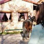 Najtrofejnije bh. jahačice razvile posao i napravile turističku atrakciju kod Gruda