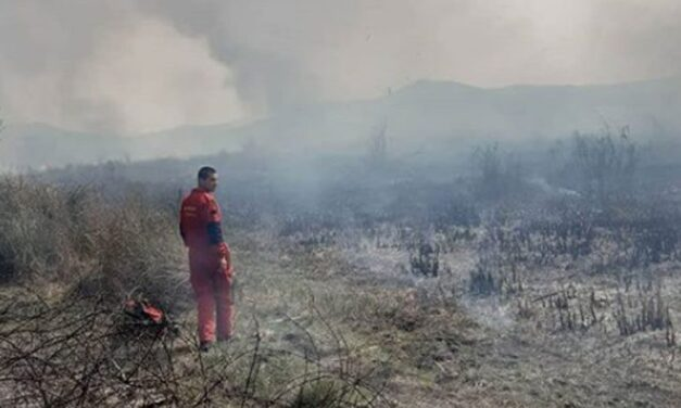 Izgorjelo oko 10 hektara Hutova blata, sumnja se da je požar podmetnut