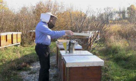 Općina Posušje izdala obavijest za pčelare