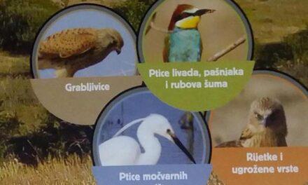 Livanjsko polje dom je za 265 vrsta ptica, neke su vrlo rijetke i ugrožene
